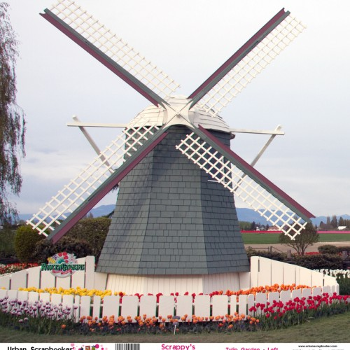 Windmill Tulip Garden View Left  Scrapbook Paper 12 x 12 inch