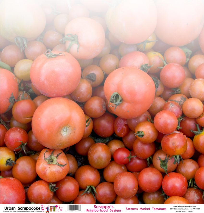 Farmers Market Tomatoes Scrapbook Paper 12 x 12 inch