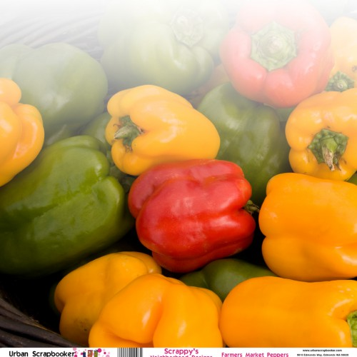 Farmers Market Peppers  Scrapbook Paper 12 x 12 inch