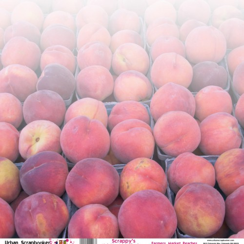 Farmers Market Peaches  Scrapbook Paper 12 x 12 inch