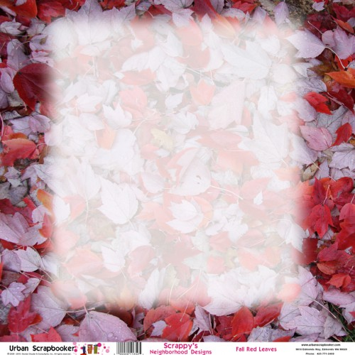 Fall Red Leaves  Scrapbook Paper 12 x 12 inch
